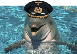 Admiral Pafin of the Navy's Dolphin fleet