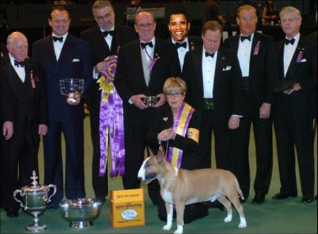 Obama was presented with the prestigious Westminster award for best dog handler.