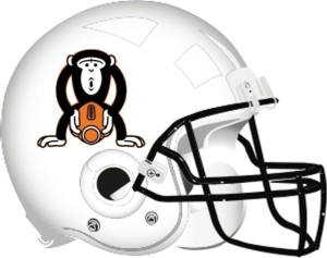 Rush Limbaugh plan to rename the team the St. Louis Monkeys has drawn a lot of criticism from NFL players, fans, and even monkey rights activists.